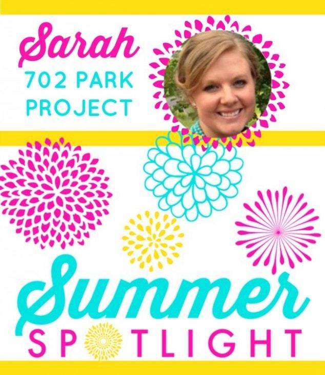 Summer-Spotlight-702-Park-Project-Graphic-1