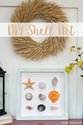 Simple DIY Shell Specimen Wall Art