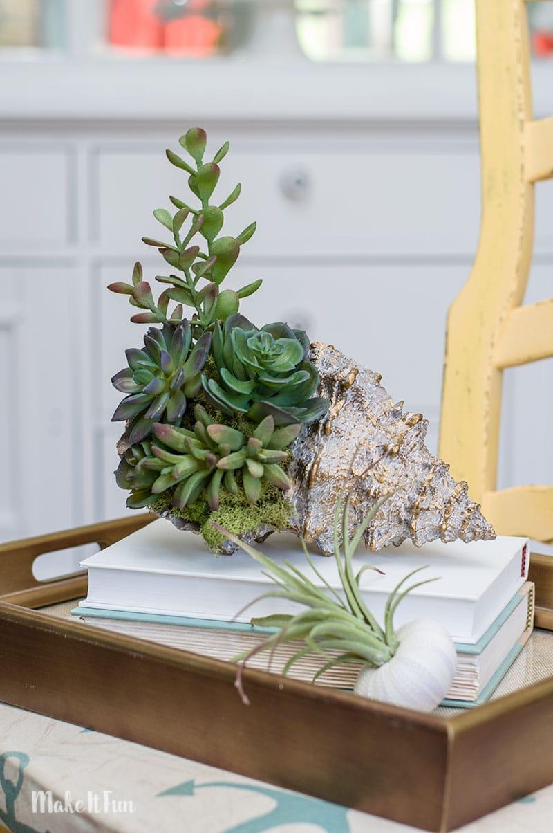 Coastal-Succulent-Shell-7-1