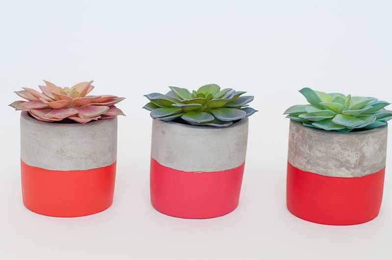 Valentine-Succulent-DIY-Plant-Pots-Darice-7