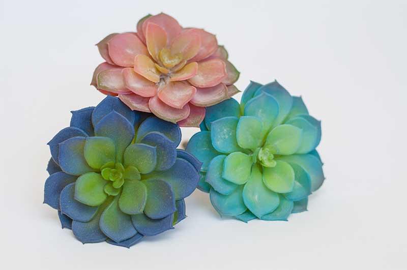 Valentine-Succulent-DIY-Plant-Pots-Darice-3
