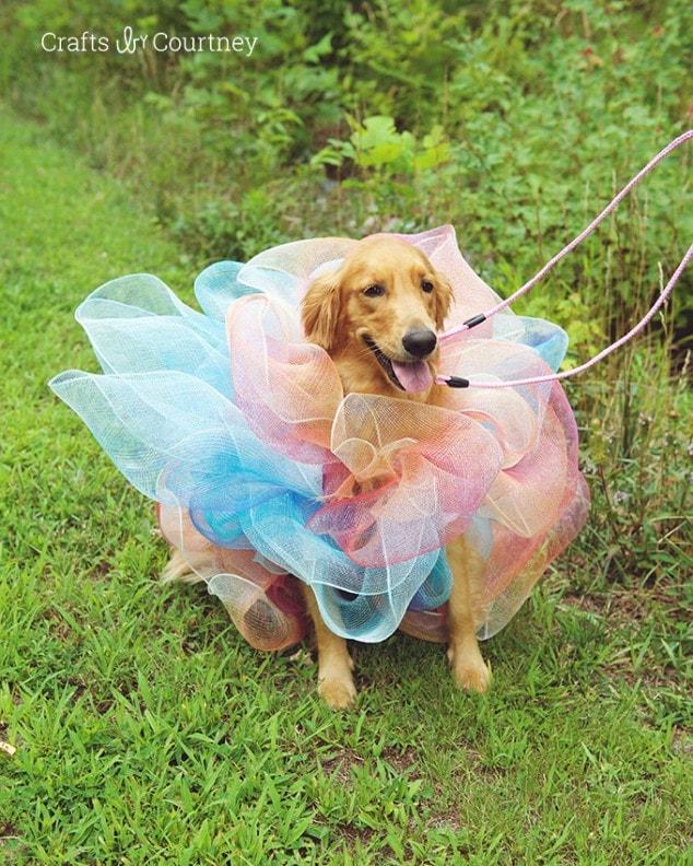 Easy Loofah Dog Costume