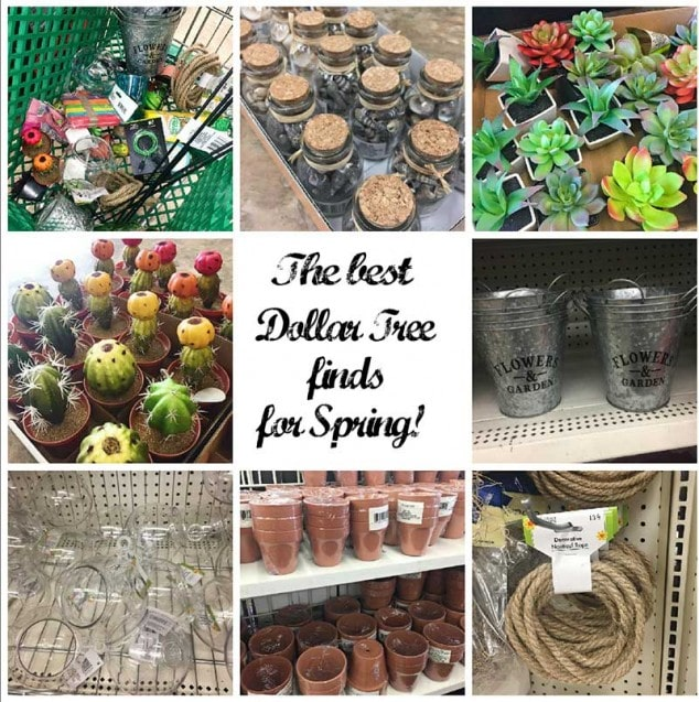 The Best Dollar Tree Finds for Spring
