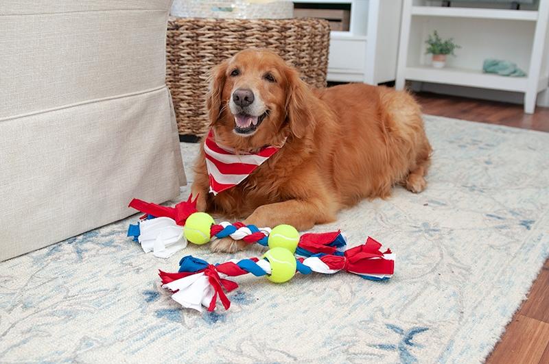 How to Make Dog Toys from Bandanas: DIY Dog Toy - Darice | Blog 3